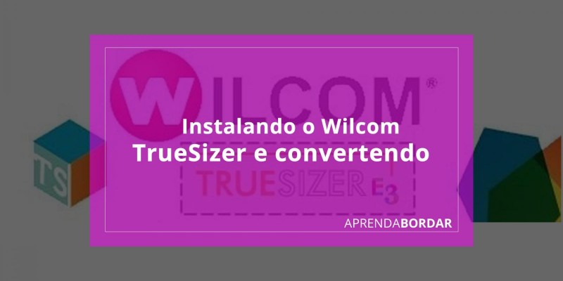 Instalando o Wilcom TrueSizer e convertendo